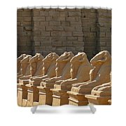 Avenue Of Sphinxes Shower Curtain
