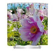 Avoca Wildflowers Shower Curtain