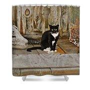 Avon Harbor Bxw Cat 9/05 Shower Curtain