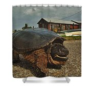 Avon Harbor Large Turtle 1 6/07 Shower Curtain