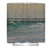 Avon Pier And Birds 7/30 Shower Curtain