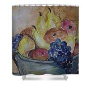 Avonelle's Fruit Bowl Shower Curtain
