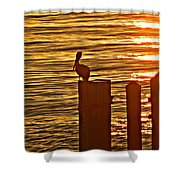 Late For Dinner Shower Curtain