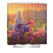 Awakening - Mt Susitna Spring - Sleeping Lady Shower Curtain