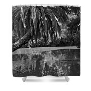 Awesome Pond 1 Shower Curtain by Denise Mazzocco