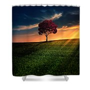 Awesome Solitude Shower Curtain