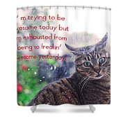 Awesomeness  Shower Curtain
