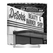 Az Route 66 - Ash Fork - Desoto's  Shower Curtain