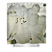 Azalea - No 1 Shower Curtain