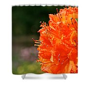Azalea Profile Shower Curtain