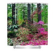 Azaleas Red Maple And Magnolia Trees Shower Curtain
