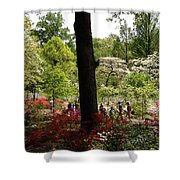 Azaleas Us National Arboretum Shower Curtain