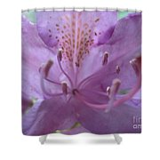 Azalia Macro Shower Curtain