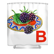 B Art Alphabet For Kids Room Shower Curtain