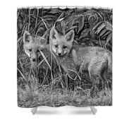 Babes In The Woods 2 - Paint Bw Shower Curtain