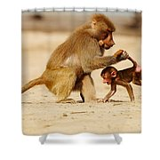 Baboon With Baby Shower Curtain