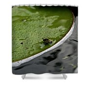 Baby Amphibian Shower Curtain