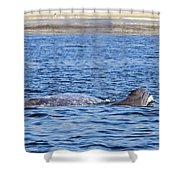 Baby And Mother Shower Curtain