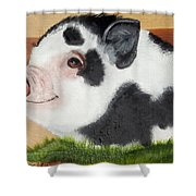 Baby Bacon Shower Curtain