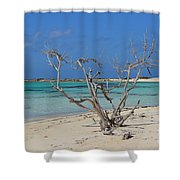 Baby Beach With Driftwood Shower Curtain