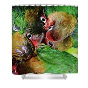 Baby Bird Nest In Hong Kong Bird Market Shower Curtain
