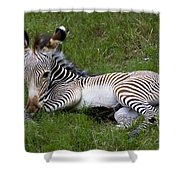 Baby Black And White Beauty Shower Curtain