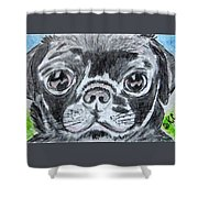 Baby Black Pug Shower Curtain