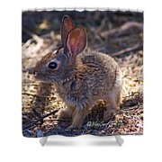 Baby Bunny Shower Curtain