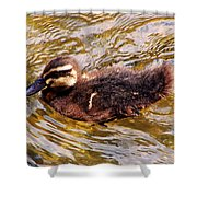 Baby Canadian Goose Shower Curtain