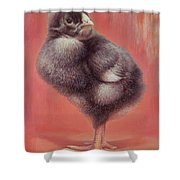 Baby Chick Shower Curtain