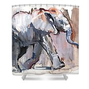 Baby Elephant, 2012 Mixed Media On Paper Shower Curtain
