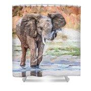 Baby Elephant Spraying Water Shower Curtain
