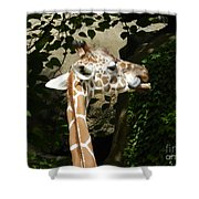 Baby Giraffe 2 Shower Curtain