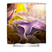Baby Hydrangeas Shower Curtain