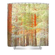 Baby Its Cold Outside But The Trees Don't Freeze  Shower Curtain