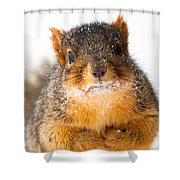 Baby It's Cold Outside Shower Curtain by Optical Playground By MP Ray