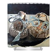 Baby Moccasins  Shower Curtain