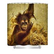 Baby Orangutan At The Denver Zoo Shower Curtain