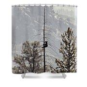 Baby Tree Hugger Shower Curtain
