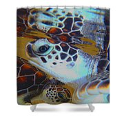 Baby Turtles Shower Curtain
