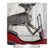 Baby You Can Drive My Car Shower Curtain
