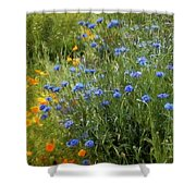 Bachelor's Meadow Shower Curtain