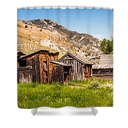 Bachelors Row Shower Curtain by Sue Smith