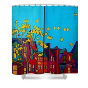 Back Bay Boston Shower Curtain