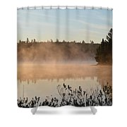 Back Bay Shower Curtain