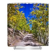 Back Country Road Take Me Home Colorado Shower Curtain