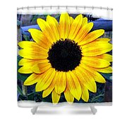 Back Forty Sunflower Shower Curtain