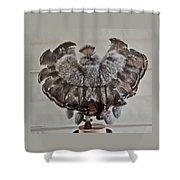 Back Kachina Eagle Shower Curtain