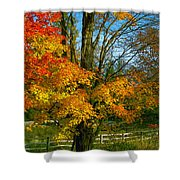 Back Road Beauty Shower Curtain