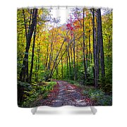 Back Road In The Adirondacks Shower Curtain
